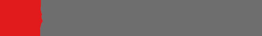 00120-salvadori-logo-executive